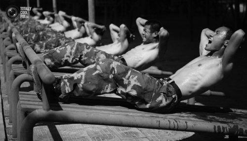 aa07cdcadbd1 тренировка берпи фитнес-тренер