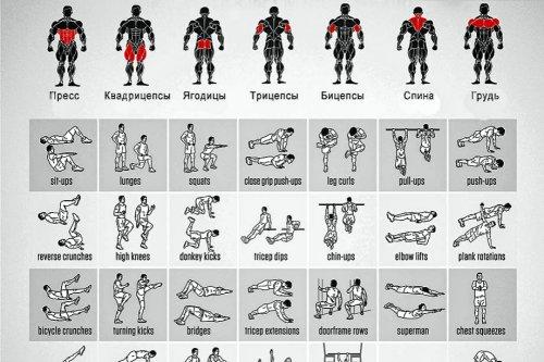 Программа тренировок для похудения для мужчин в спортзале