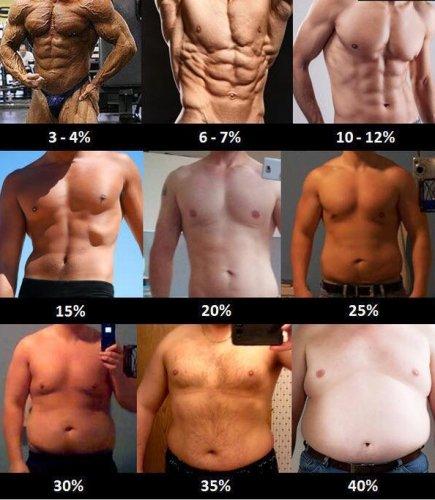 процент жира тела мужчин