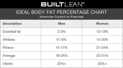 Питание при силовых тренировках для похудения. Основы питания при силовых и аэробных тренировках