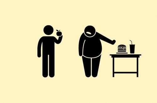 что едят зожники